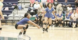 Carman-Ainsworth's Diamond Lester, shown here setting up a dig against Lapeer on Sept. 11, recorded nine kills in last Thursday's semifinal. Photo by Kylee Richardson