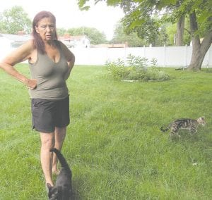 Lisa Olson is visited by a few of the feral cats that live in the woods behind her home. Photo by Jalene Jameson