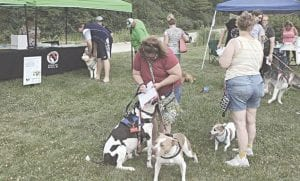 Dogs and owners converged on Bicentennial Park, Sunday, for the dog walk.