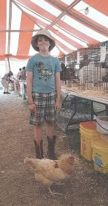 7-year-old Orion Bagley from Mt. Morris showed off his sister's prized 4-H hen, Buffy, inside the fair's Poultry Tent.