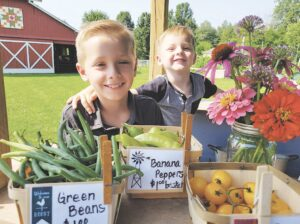 Wesley Schaibly, 7, and little brother Grayson, 4, run The Freckled Hen, a farm stand at the Raymond Family Farm owned by their Nana and Papa, Dawn and Mike Raymond, on Carpenter Road. Photo by Krystal Moralee