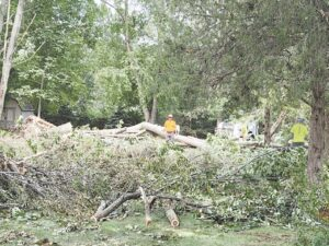 Crews clearing massive piles of fallen trees and limbs left over from the Aug. 11 storm. Photo provided